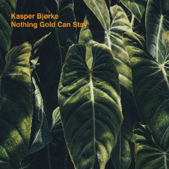 "Kasper Bjørke - ""Nothing Gold Can Stay (lp, Colored, Dl)"" 